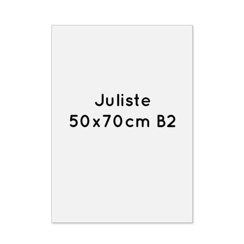 Juliste 50x70cm (B2)