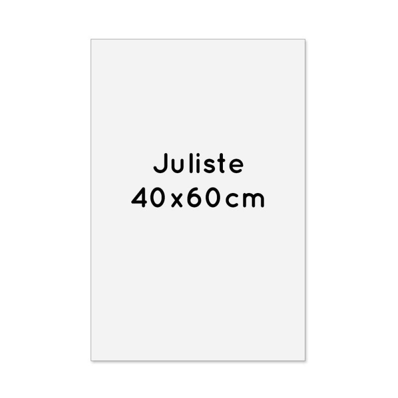 Juliste 40x60cm
