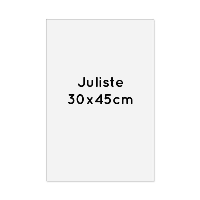 Juliste 30x45cm