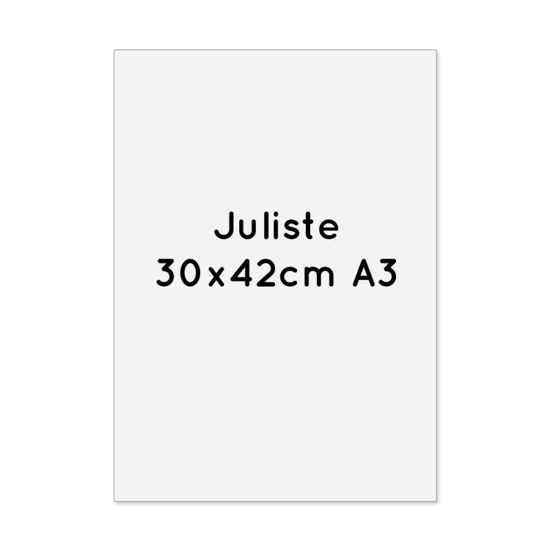 Juliste 30x42cm (A3) 4-väri