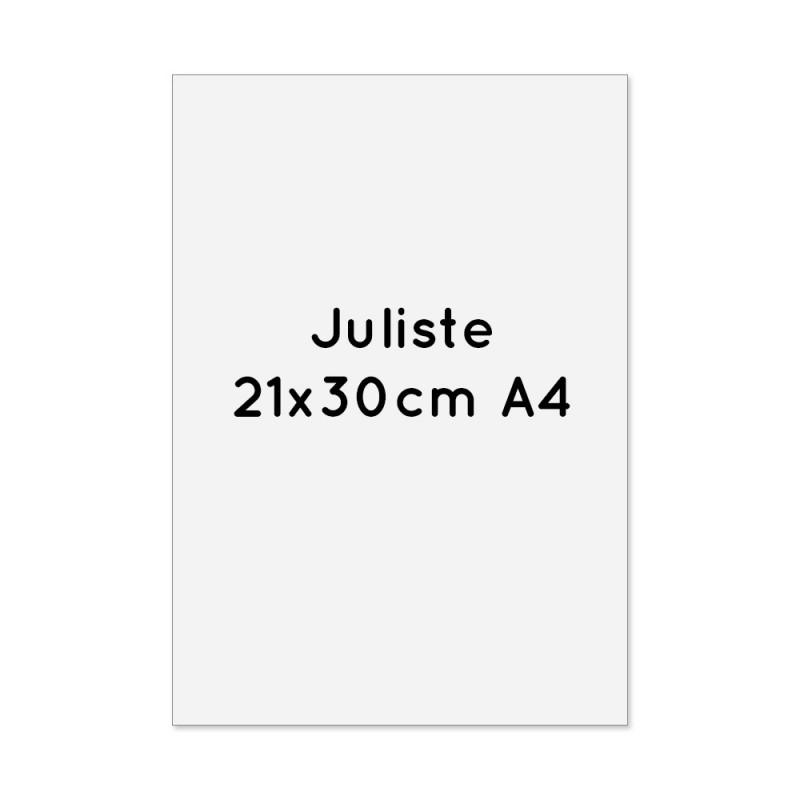 Juliste 21x30cm (A4) 4-väri