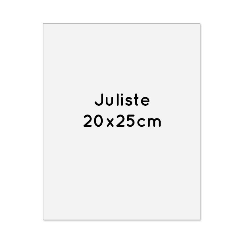 Juliste 20x25cm 4-väri